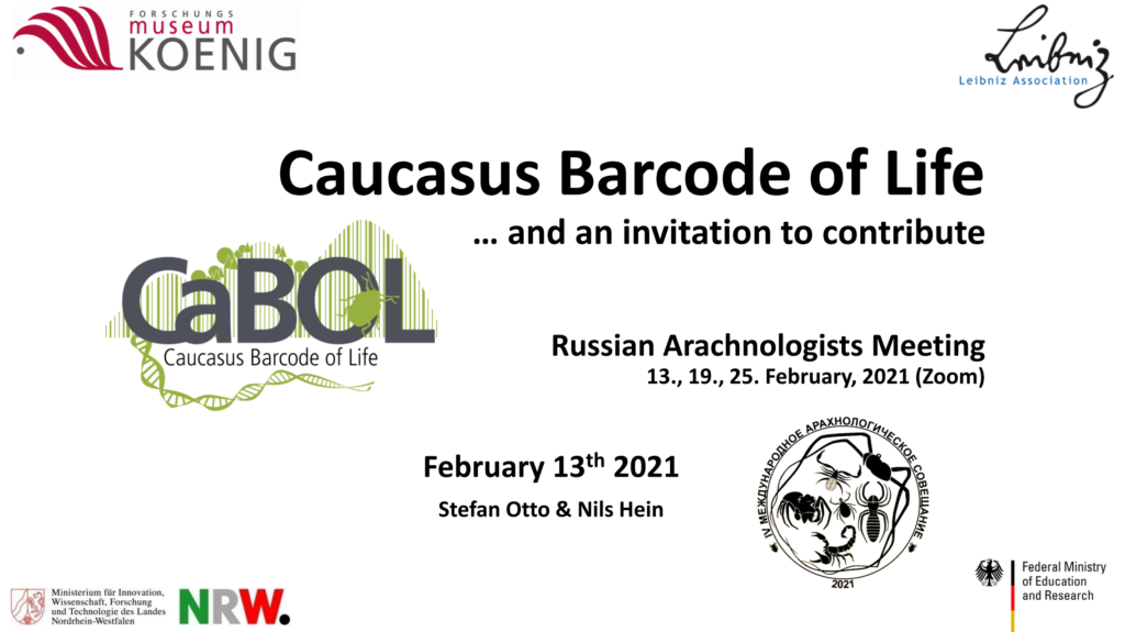 CaBOL at the 2021 Meeting of Russian Arachnologists