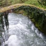 Georgia_River_Kintrishi_Old_Bridge